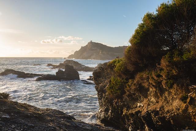 L'île du Gaou, France, Var -3D0A9192