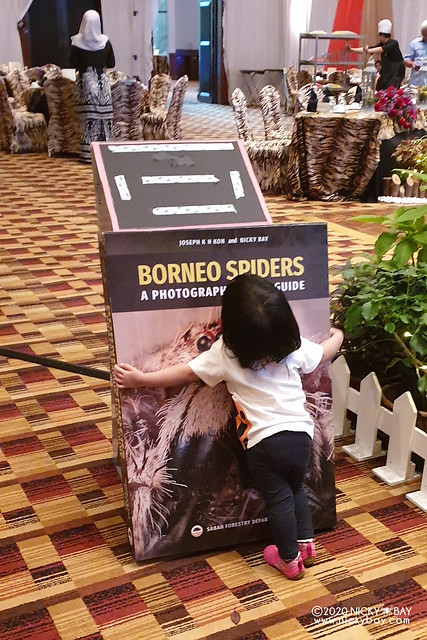 Borneo Spiders Launch - borneo-spiders-launch-20190321_174241