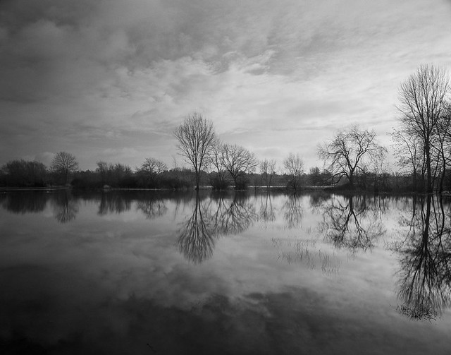 20201229_Flooded-Meadow_FP4_HC110B_001_web