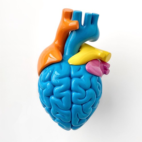 MULTICOLOR BRAIN HEARTS