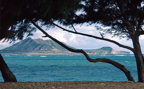 In Hawaii (2)