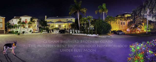 German Shepherd Dog Brothers Guard The Mercedes-Benz Brotherhood Neighborhood Under Full Moon - IMRAN™