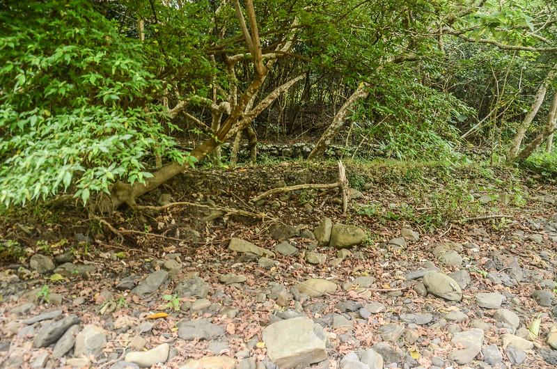 舊社台階地蛇籠