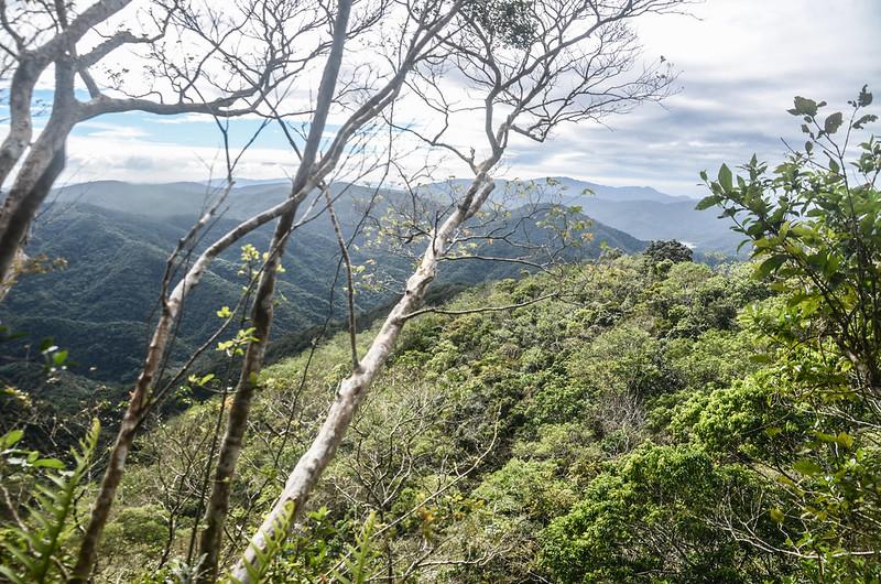 女仍山南稜線(H 633 m)南眺虎頭山、三台山、老佛山稜線 (2)