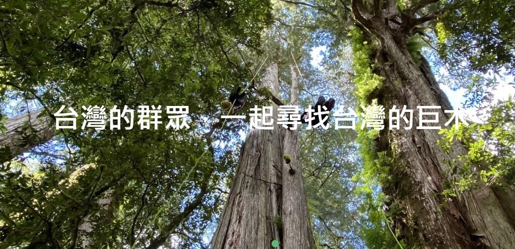 台灣的群眾 一起尋找台灣的巨木。