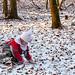 Snow for Christmas 2020