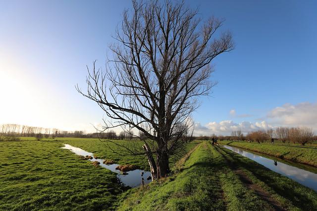 Landscape - Stekene - Belgium