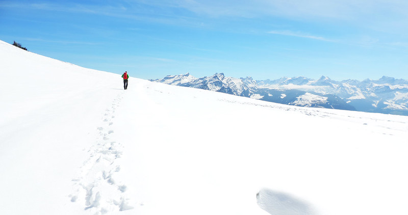 Swiss Alps, 2016