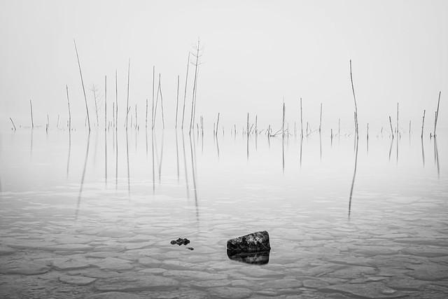 Lake Constance High-Key -Switzerland