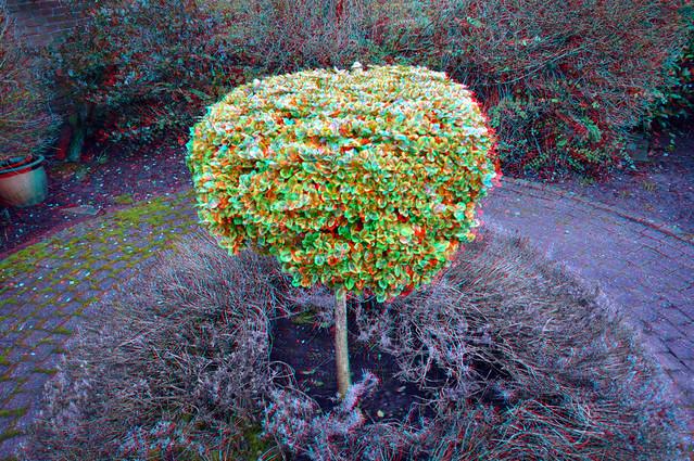 Voortuin Primulastraat Zwijndrecht 3D