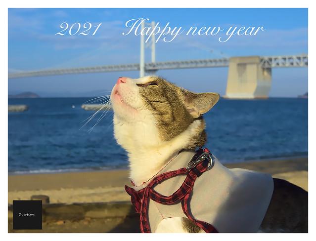 Happy new year 2021