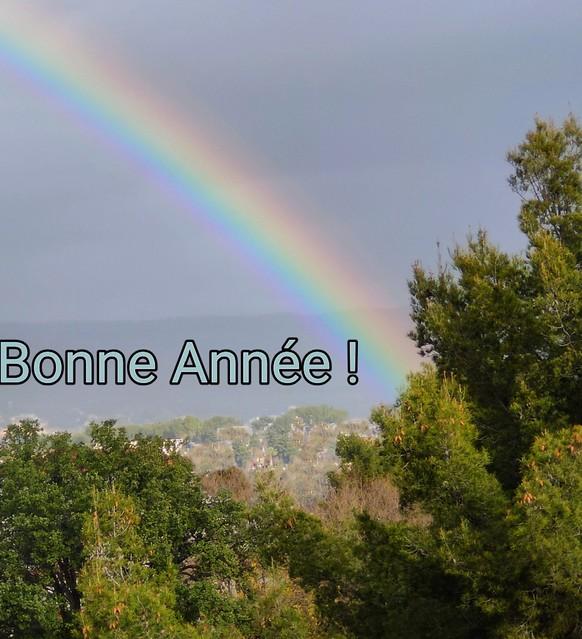 Bonne Année 2021 / Happy New Year 2021 / Feliz año nuevo 2021 / 2021年新年快乐