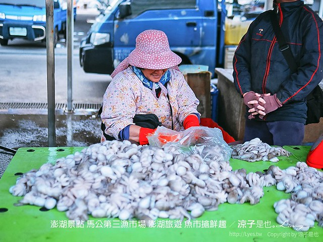 澎湖景點 馬公第三漁市場 澎湖旅遊 魚市搶鮮趣