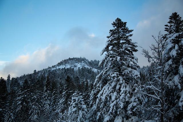 Massif du Lioran (Cantal) sous une belle couche de poudreuse !