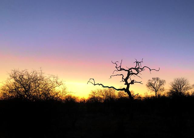 Sunrise in South Africa