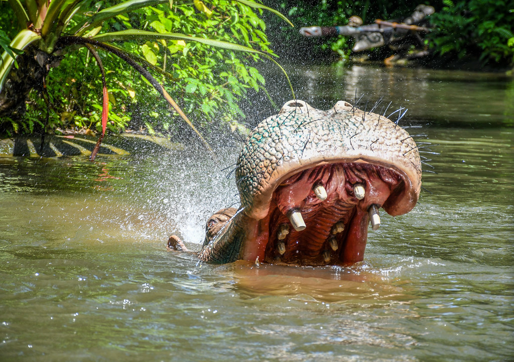 Hippo Jungle Cruise splash MK
