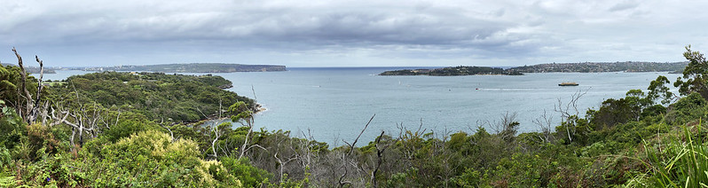 Middle Head panorama