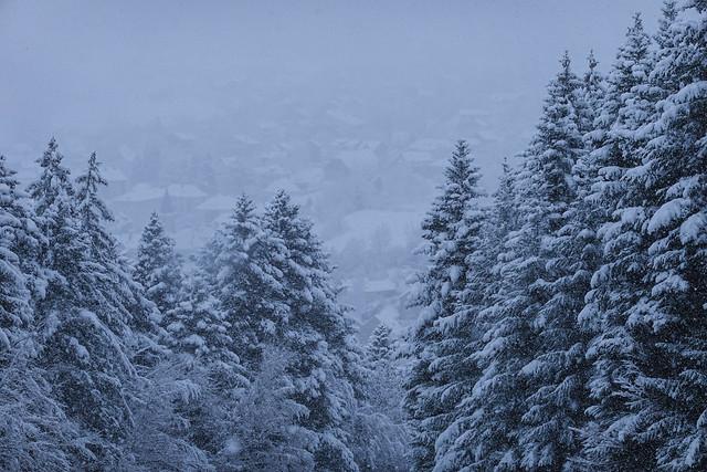 2021-01-01 (01) Le Sappey-en-Chartreuse sous la neige