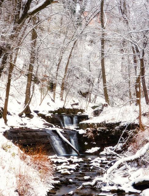 Connell Run Falls