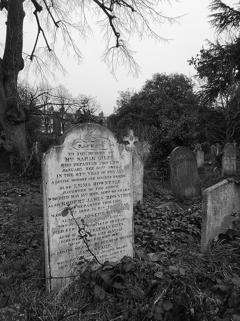 Walking between the dead of Brompton Cemetery