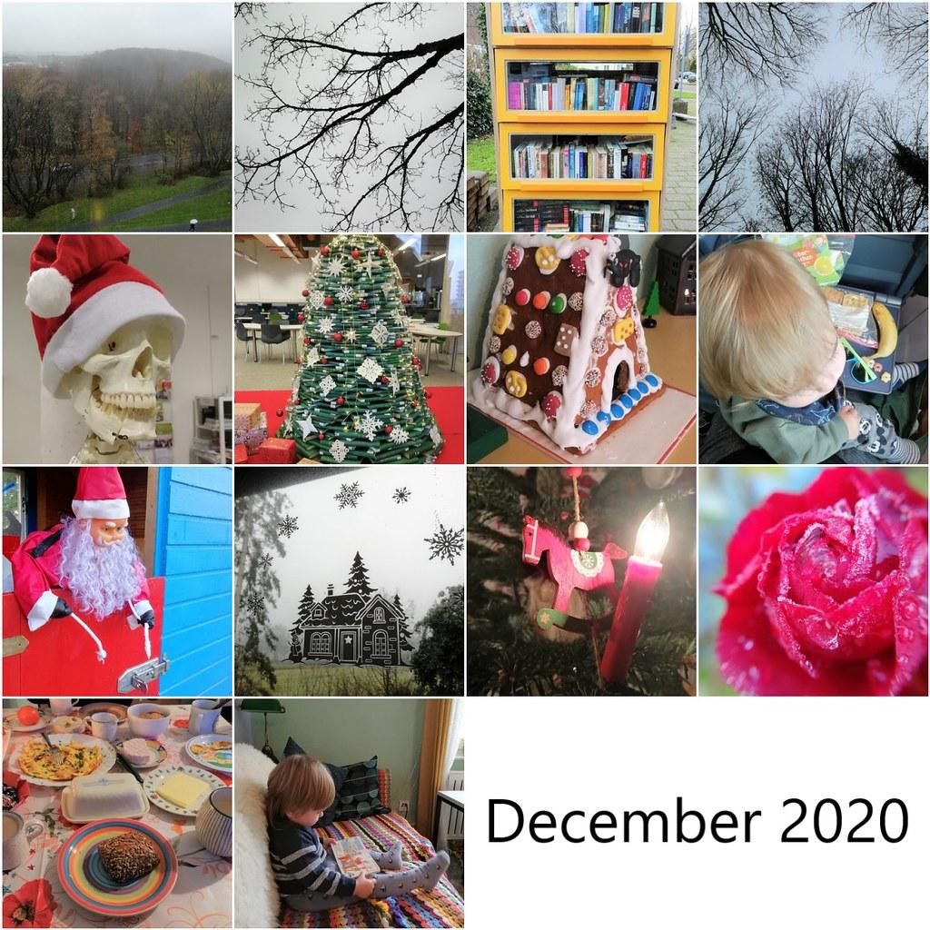 December 2020 mosaic