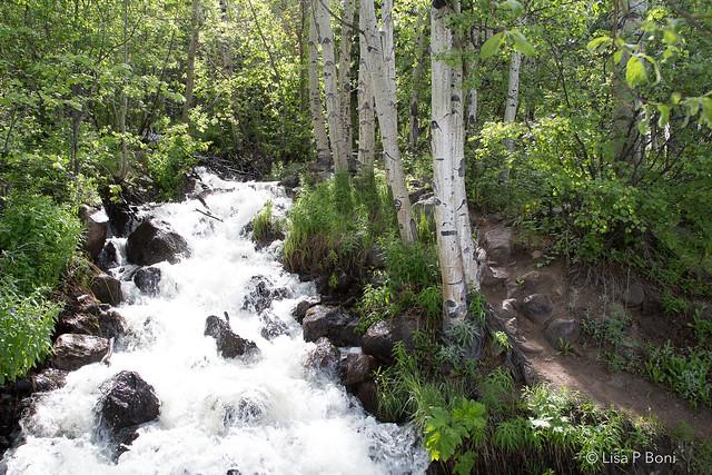 2020.06.15RMNP waterfall 01