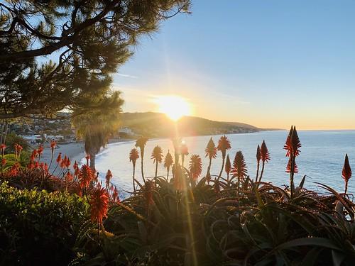 landscape nature firstsunrise sunrise lagunabeach heisler park californiastateroute1 stateroute1 sr1 ca1 npacificcoasthighway pacificcoasthighway pch socal california ca usa us unitedstates unitedstatesofamerica newyearsday