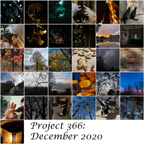 Project366 December 2020