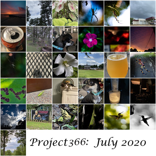 Project 366 July
