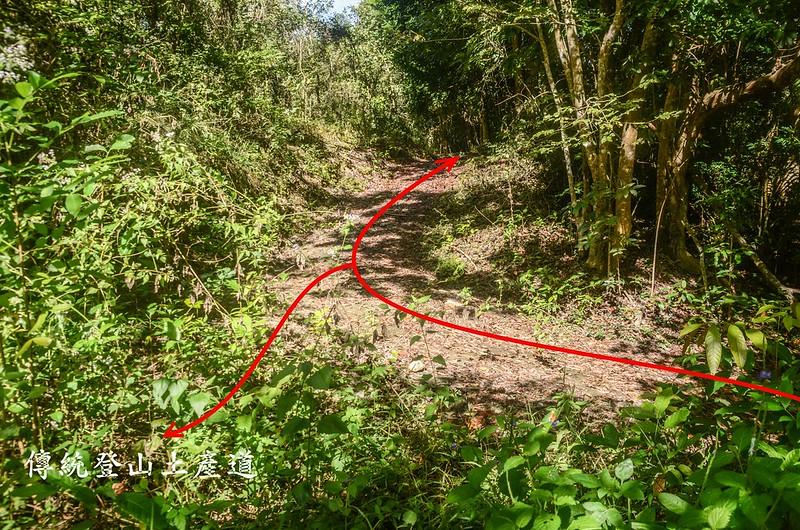 紅花園山水泥產道、廢產道岔路