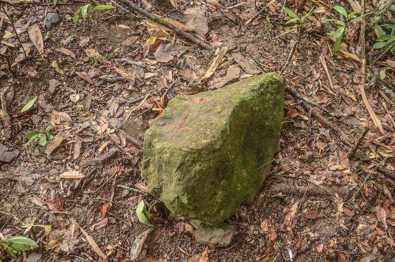 牛舌仔山友自刻自然石森林點 (3)