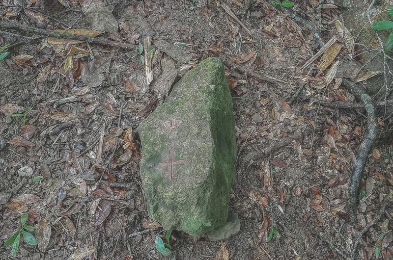 牛舌仔山友自刻自然石森林點 (1)