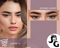 HDPRO Lashes 14