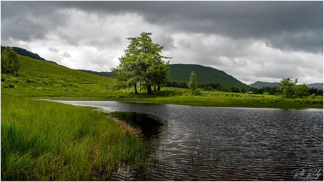 highland sweep