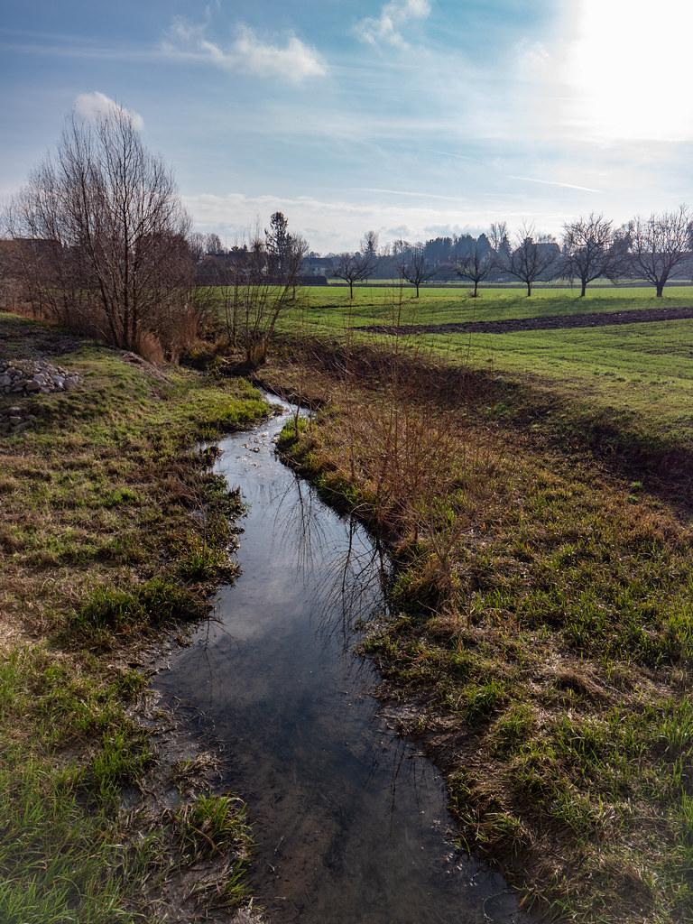 Matin d'hiver sur le Muehlbaechel (le ruisseau du moulin) 50790227428_3f62067fc4_b