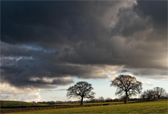Bickenhall Plain