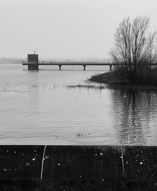 New Year's Day 2021 at Alton Water