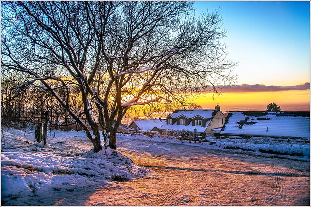 Glowing winterscape