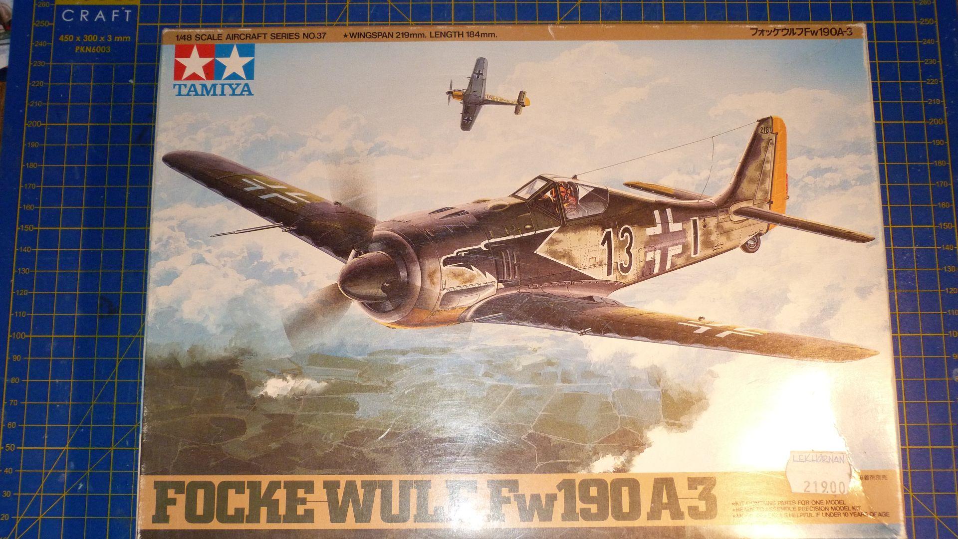 FW-190A-3 Escuadrilla Azul 50790910942_905dcfbb52_o