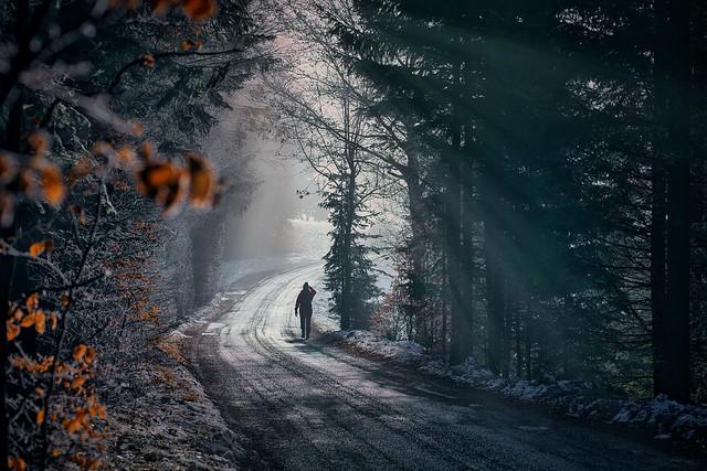 The way into the new year/ Der Weg ins neue Jahr