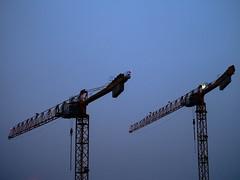 Crane Ballet