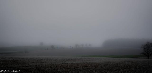 Morgennebel im Kraichgau