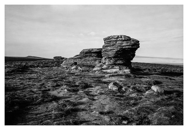 The Ox Stones
