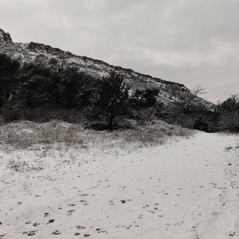 St jean du Puy / Laurelien ss la neige 2janv2020
