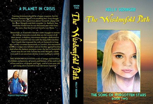 THE WISDOMFOLD PATH full cover