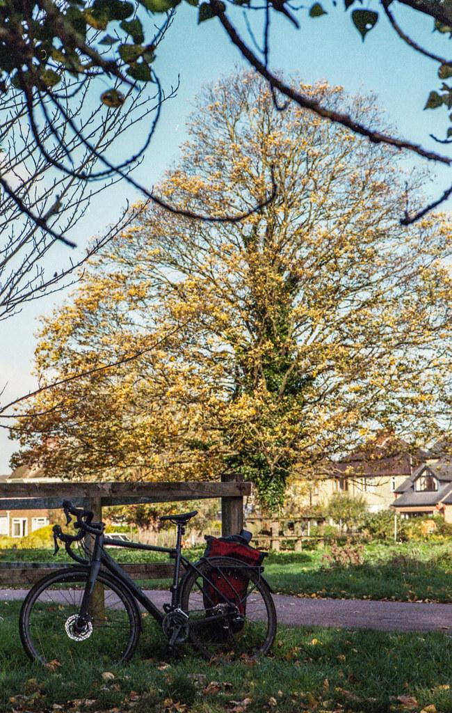 Cambridge In Autumn