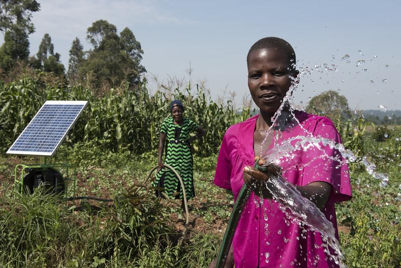 Irrigating a farm using solar-powered water pump, Kenya