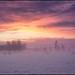 Årets Första Solnedgång