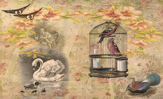 Birdcage Double Page
