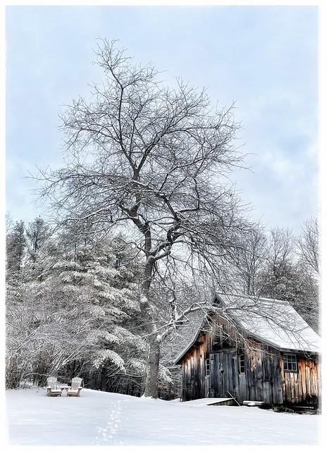 Winter Scene - take two - in Explore